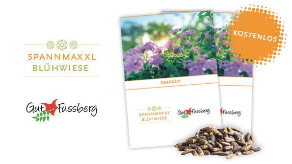 SPANNMAXXL Blühwiese: aktiv CO2 reduzieren